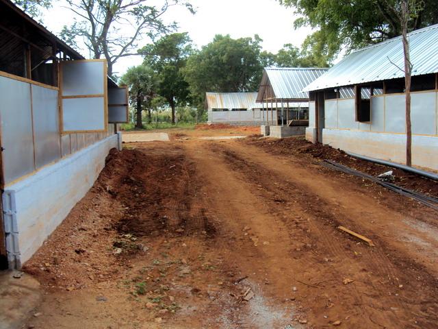 VAROD Girls home in Pambaimadhu in the process- 2010 Dec