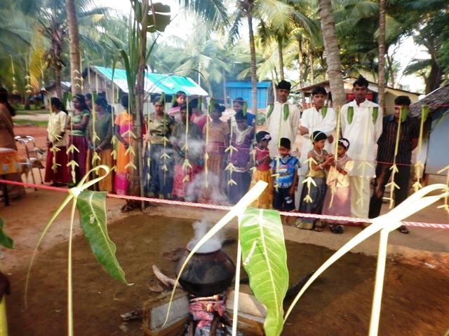 Thaipongal Celebrations at VAROD 2012